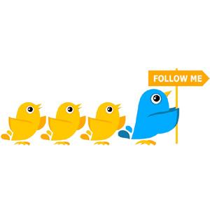 twitter seguidores 2
