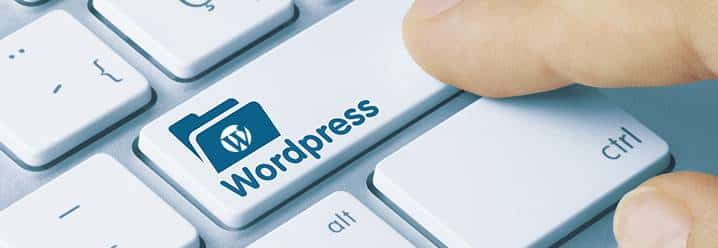 Wordpress boton